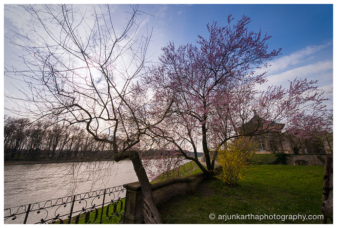 travel-photography-dresden-akp-146