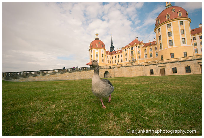 travel-photography-dresden-akp-84