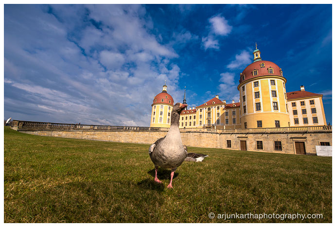 travel-photography-dresden-akp-86